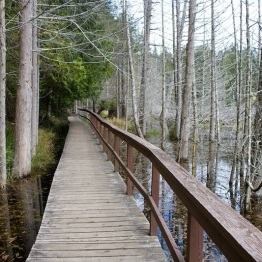 Smuggler's Trail