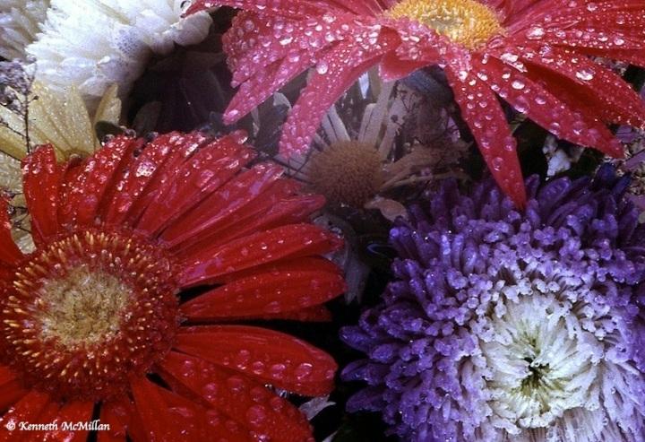 Bouquet_watermarked
