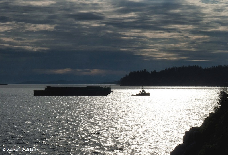 Tug and Barge coming into Trail Bay, Sechelt, BC - 2011