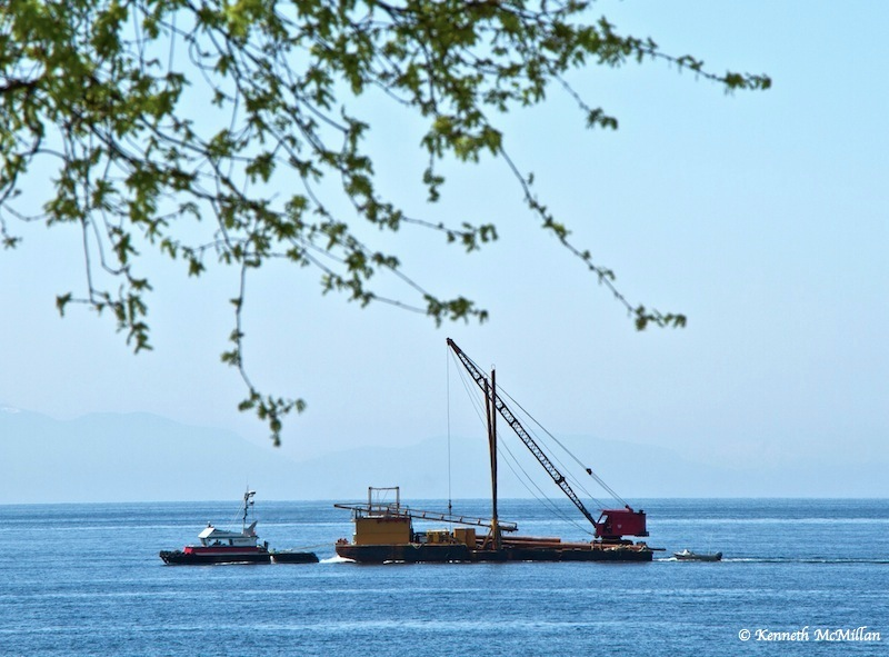 Tow boat and work barge, Davis Bay, BC - 2013