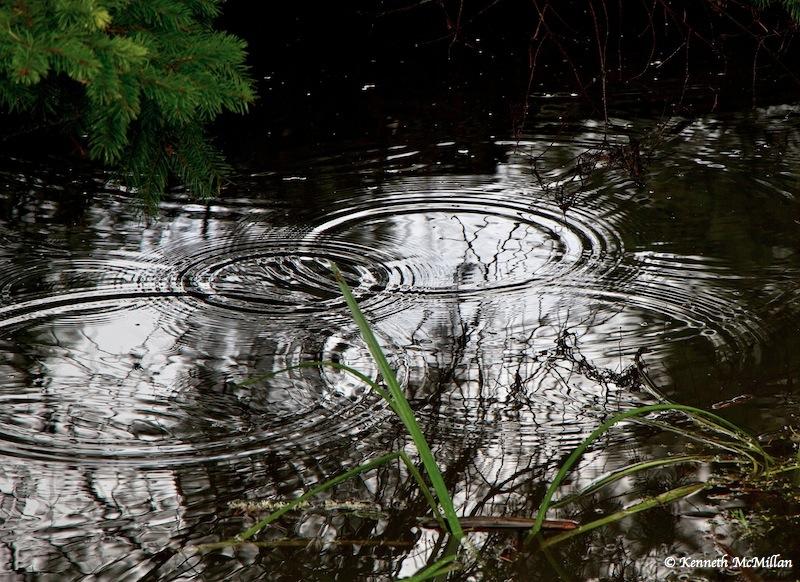 Drips_watermarked