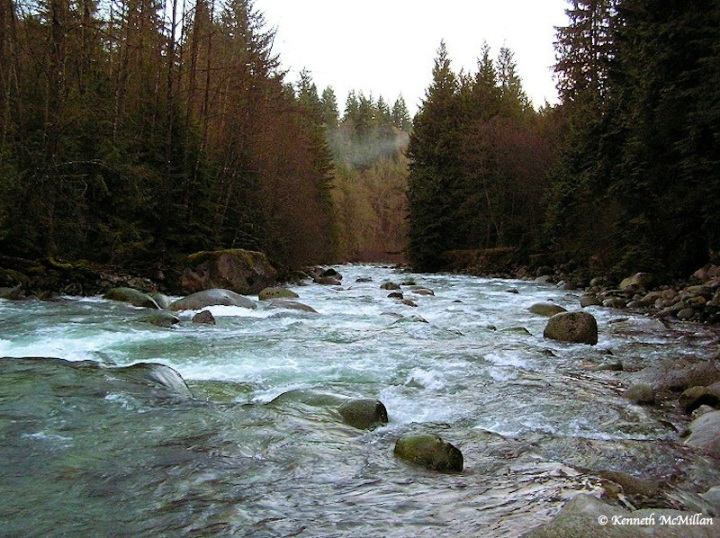 Lynn Canyon Headwaters_watermarked
