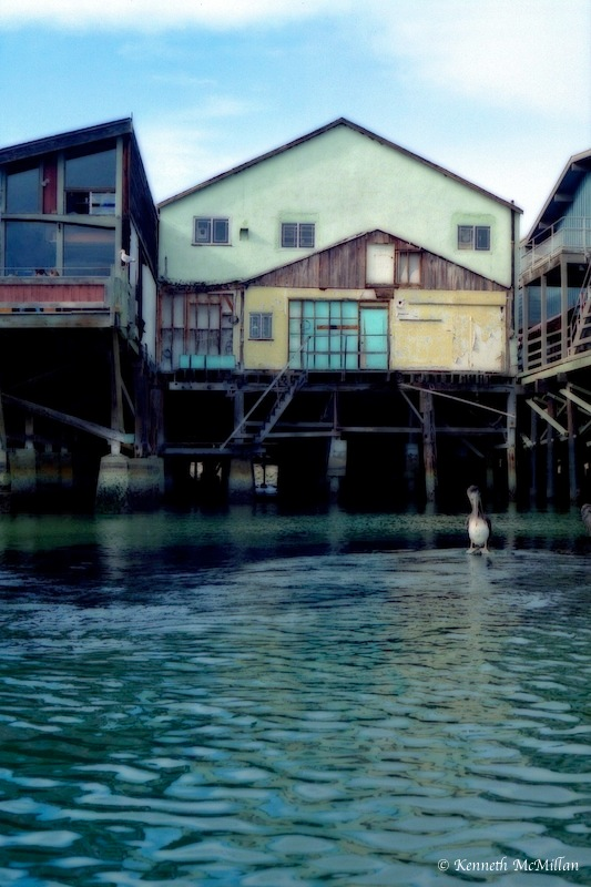 Cannery Row 3_watermarked