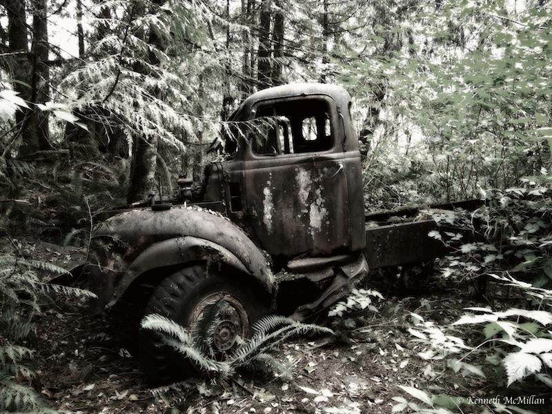 Location: Tzoonie Narrows Park, British Columbia, Canada