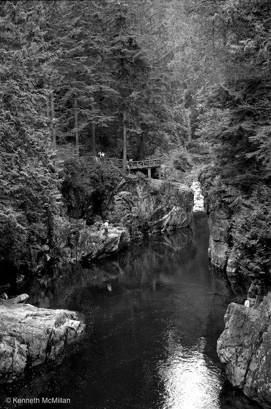 Location: Capilano River, North Vancouver, British Columbia, Canada