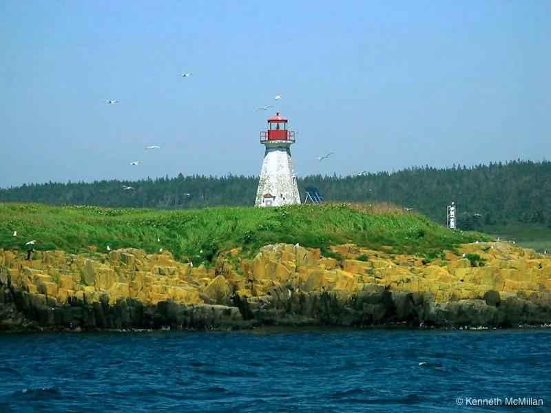 Brier Island_watermarked