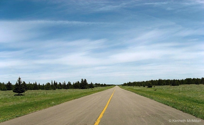 Location: The Cypress Hills, Alberta, Canada