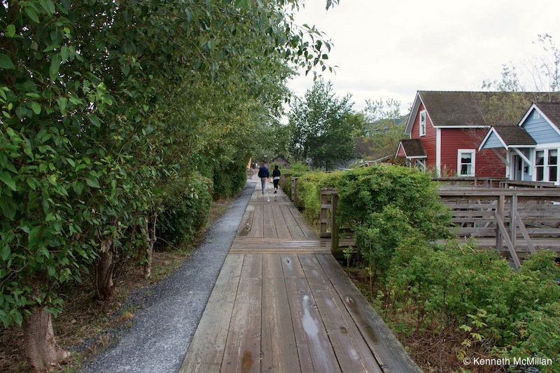 The wood boardwalk