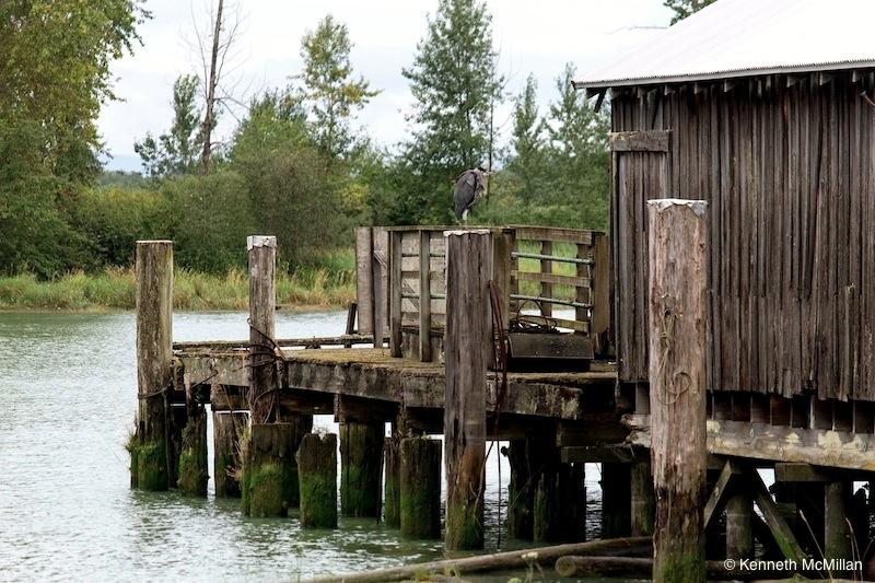 The Steveston Riverfront