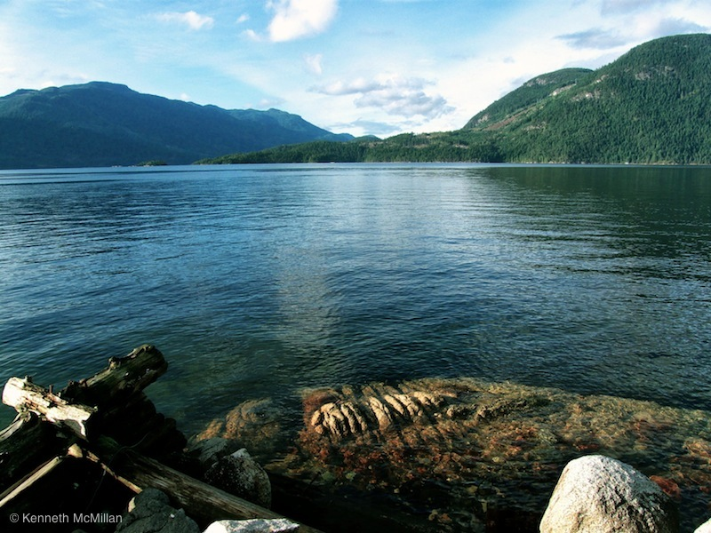 Location: Salmon Inlet in Sechelt Inlet, British Columbia, Canada