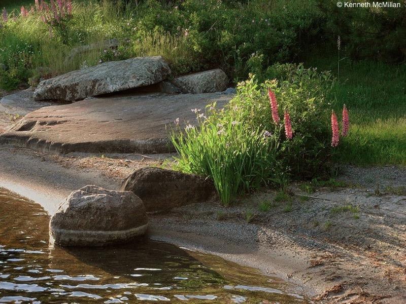Location: Longbow Lake, Ontario, Canada