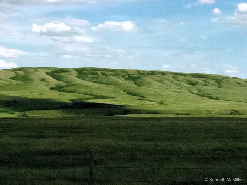 Location: Cypress Hills Provincial Park, Alberta, Canada