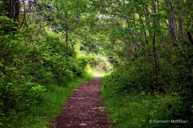 Pathway_watermarked