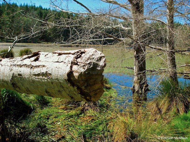 Simson Marine Park 05_watermarked