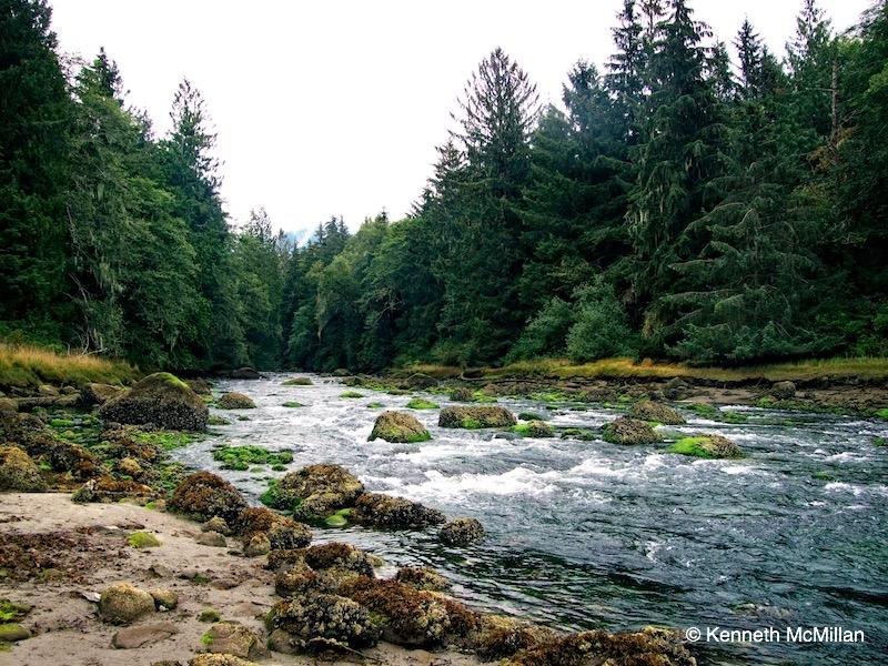Location: Deserted Bay, British Columbia, Canada