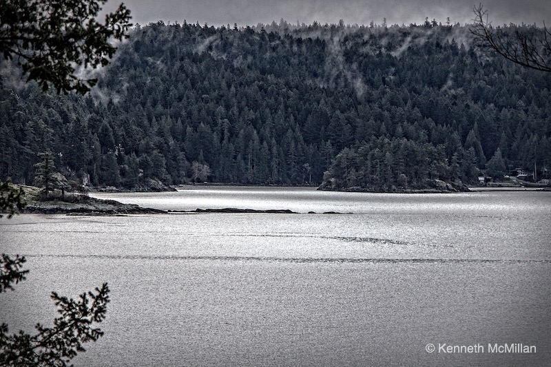 Location: Francis Peninsula, British Columbia, Canada